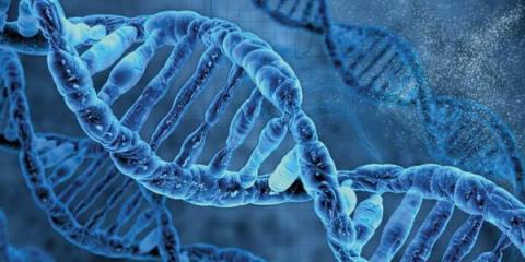 2017年基因领域的8大趋势 新数据流的整合